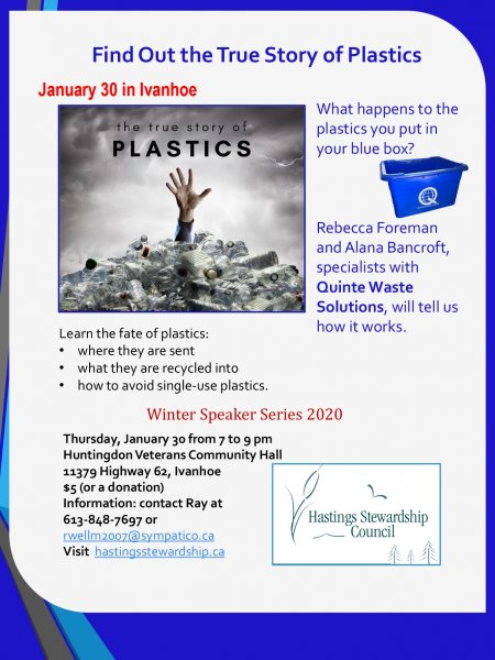 Find Out the True Story of Plastics