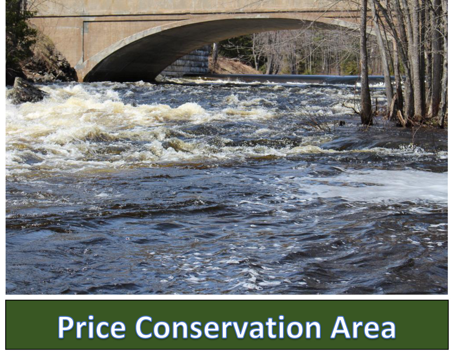 price conservation area